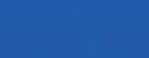 project blu logo